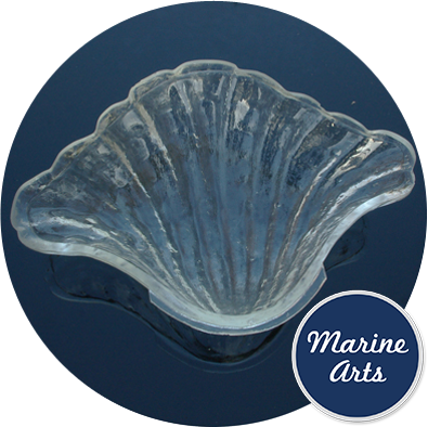 - Glass Scallop Shells