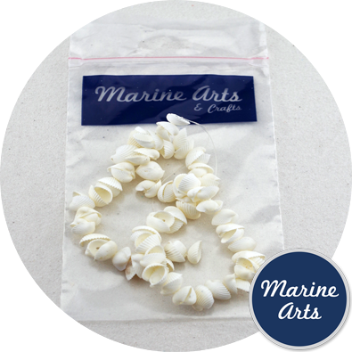8074-P8 - Drilled - Mini Cockle - Sea Shell Garland