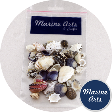 8847-P9 - Hobby & Craft Pack - Mixed Small Shells