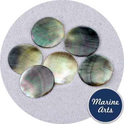 Polished Black Pearl Oyster Counters