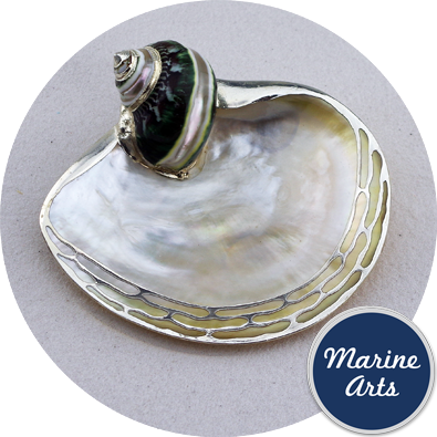 8258-P16 - Silver Edge Dish with Shell Accent - Mother of Pearl - 10-12.5cm