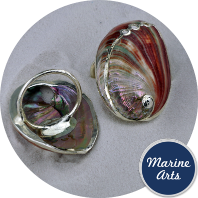 8262 - Silver Edge Napkin Ring - Red Abalone