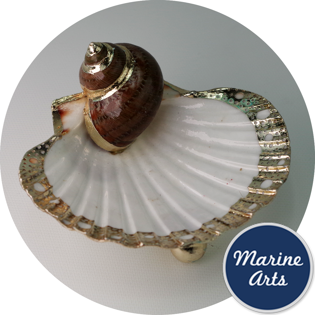 8256 - Silver Edge Dish - Clam with shell accent