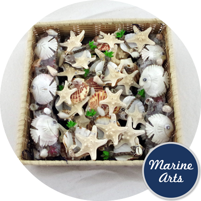 8297-P14 - Assorted Marine Art Novelty Magnets