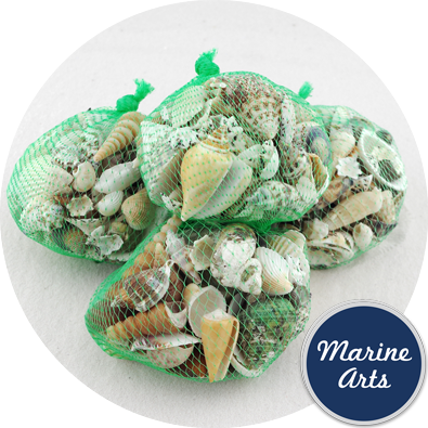 Assorted Small / Medium Shells 300g Economy Net