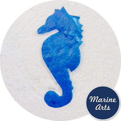 - Capiz Sea Horses - 80mm - Single Drilled Hole