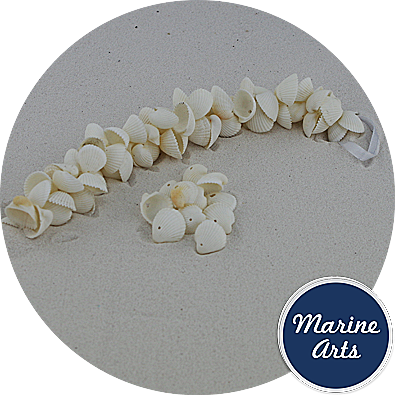 8586 - Mini White Clam Rose - Drilled Shell Garland