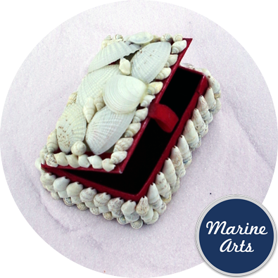 White Shell Jewellery Box - Red Lined - Small Assorted