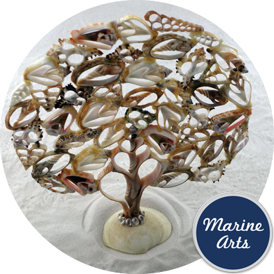 8426 - Occasion Decor - Sliced Shell Tree